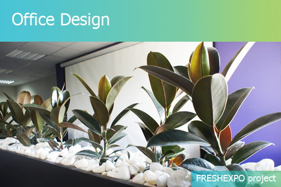 OFFICE INTERIOR DESIGN - FRESHEXPO company